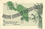 nyaguinea-BE55-1.jpg